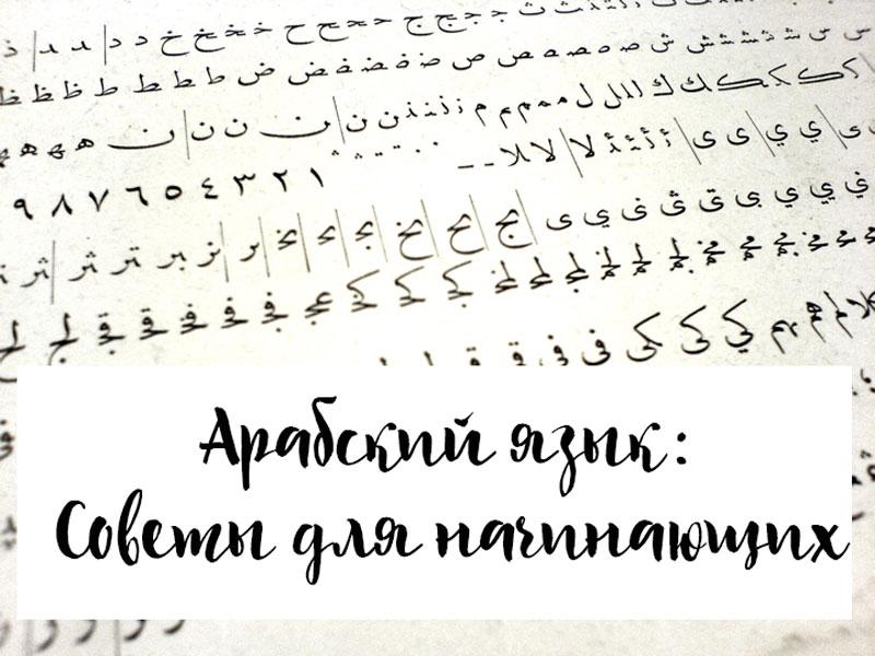 Арабский без слез: советы по изучению сложного, но прекрасного языка