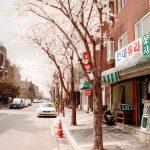 Корейский язык: как и где учить и чем вдохновляться