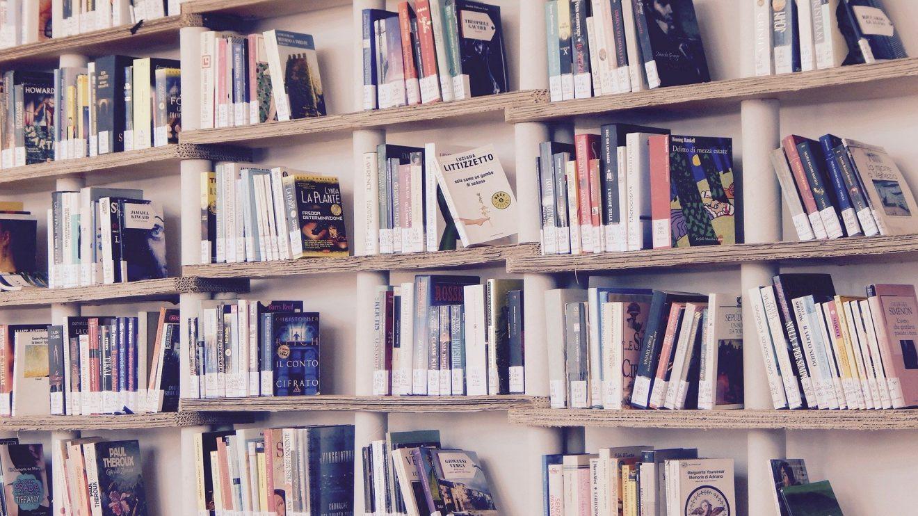 Дневник чтения, или Почему я не люблю Гарри Поттера?