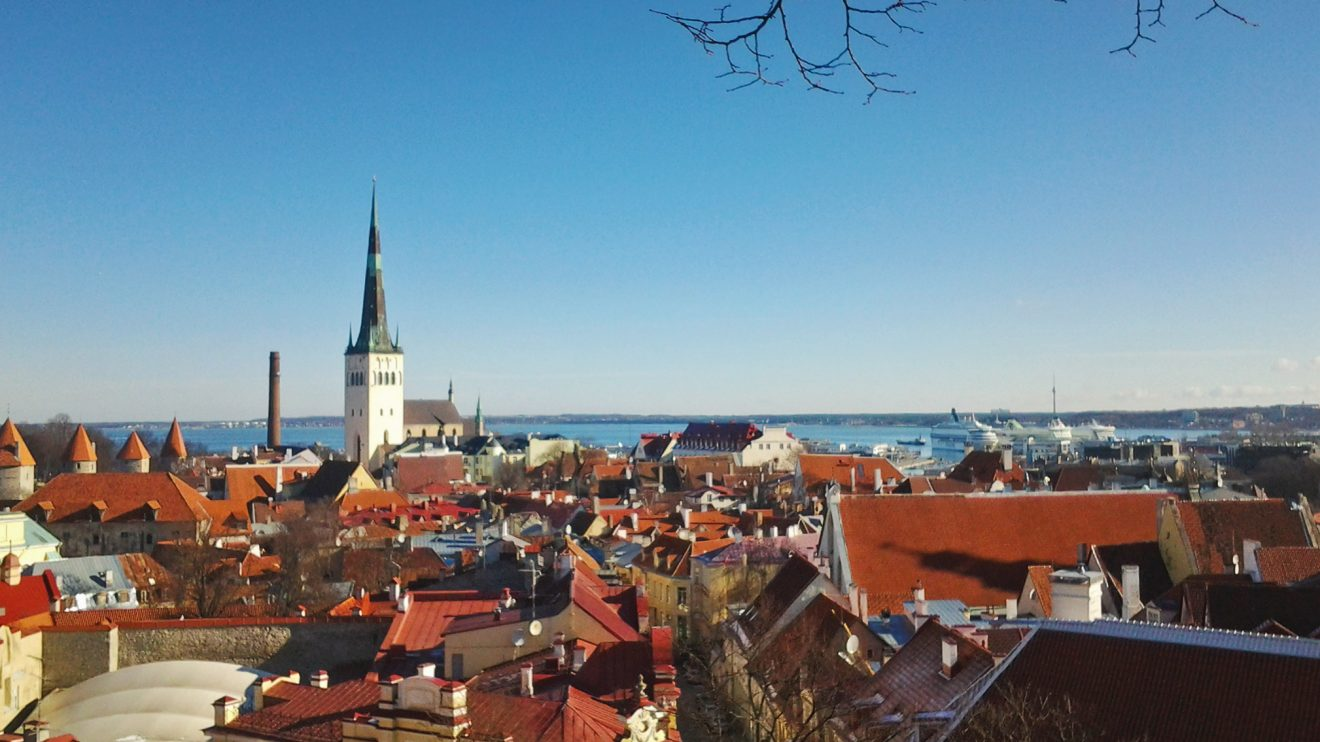 Эстонский: редкий язык и языковая яма. Как выбраться?