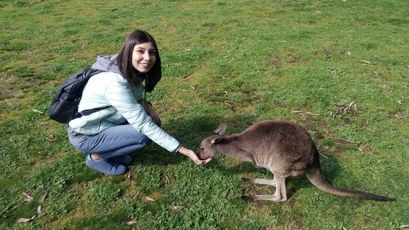 Курсы IELTS и Австралия, Или как я променяла Сидней на Аделаиду