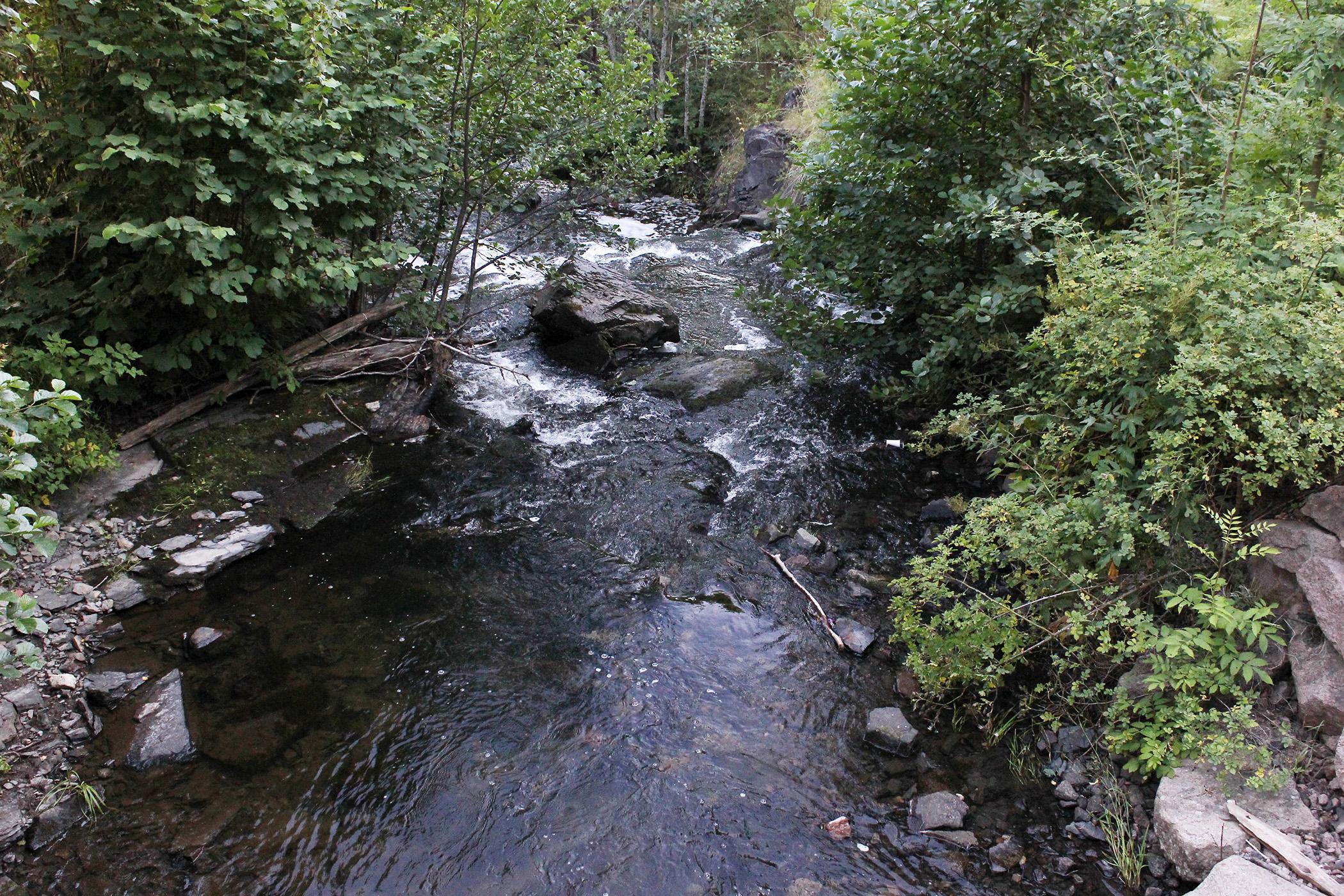 Река неподалеку от моей гостиницы
