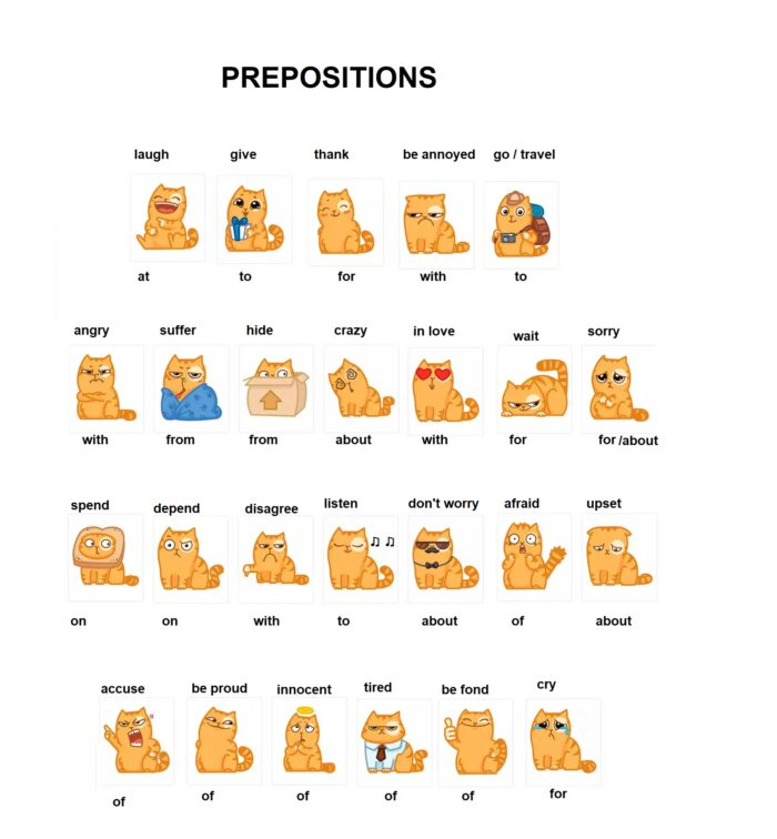 Preposition-cat